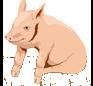 Piggyback Barns