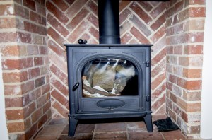 Kingfisher Wood Burning Stove